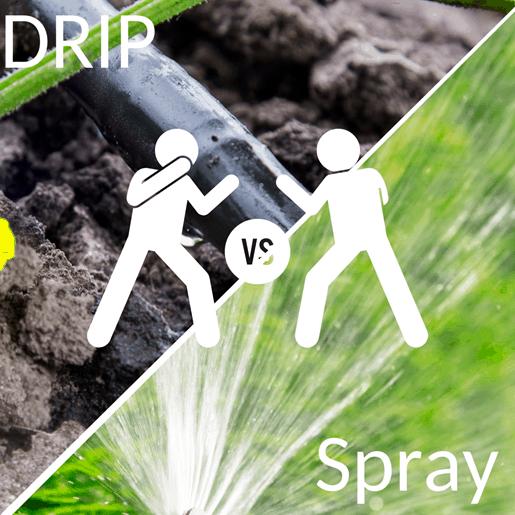 Spray Irrigation Vs Drip Irrigation